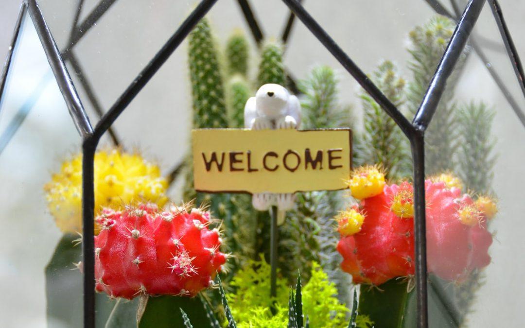 Welcome, Jenna!