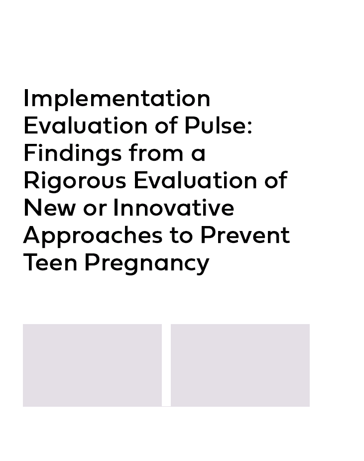 Product Image Implementation Evaluation of Pulse